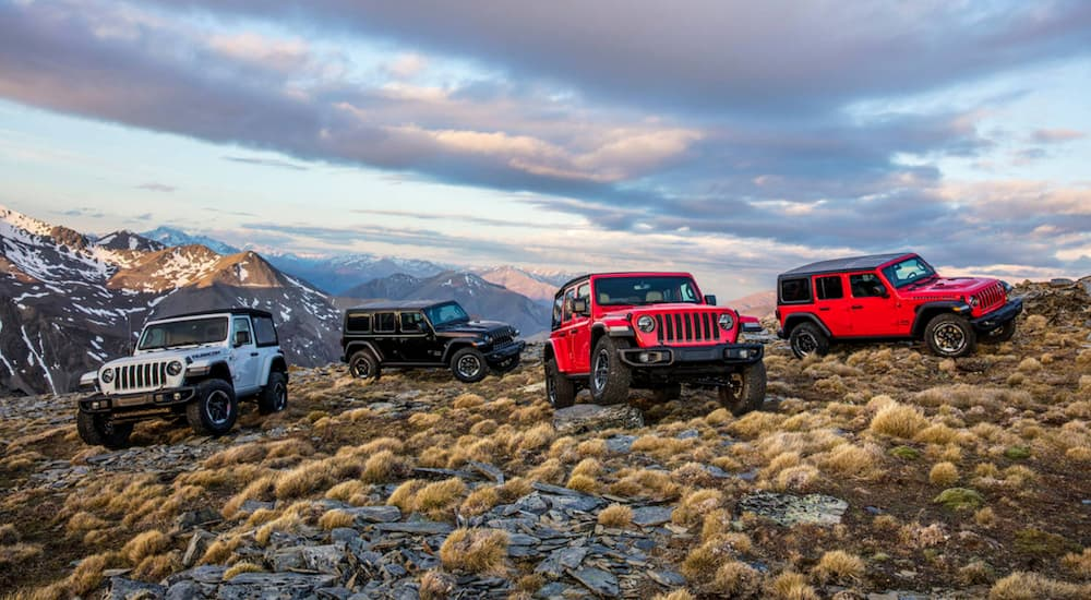 Four 2018 Jeep Wranglers are parked off-road with mountain views.