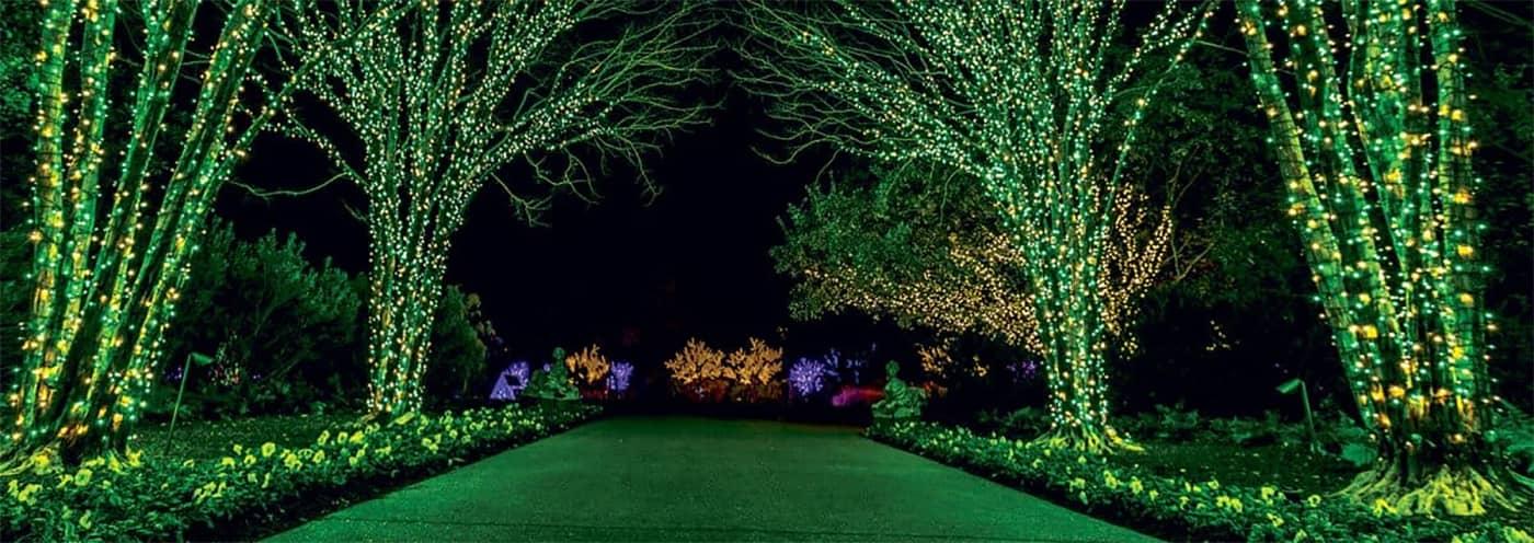Cheekwood's Holiday Lights